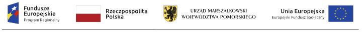 logotyp unijny projekt Srebrna Siec